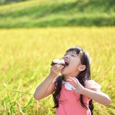 田んぼをバックにお米を食べる少女